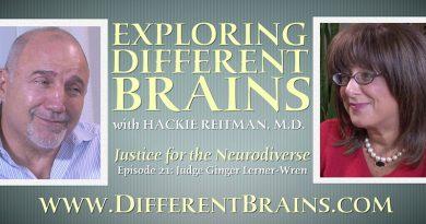 justice for the neurodiverse judge ginger lerner wren
