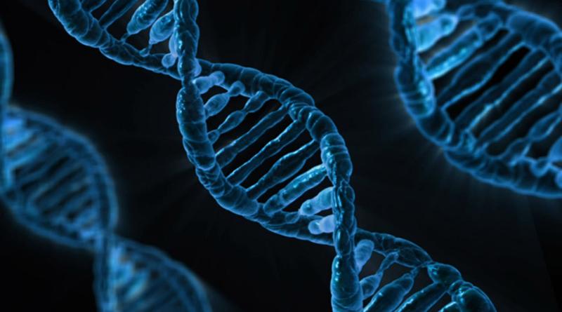 Gene On, Gene Off! Dr. Jennifer Jo Kanter-Brout