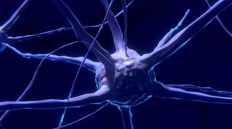 Neurometabolism And Epigenetics Understanding Neurodiversity Through A New Metabolic Molecular Lens