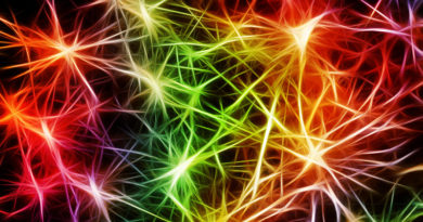 Not All Epileptic Seizures Are The Same