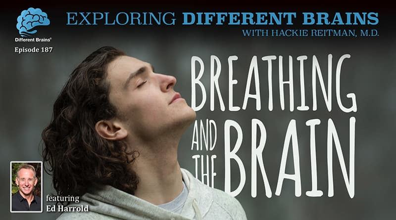 Breathing And The Brain, With Ed Harrold | EDB 187